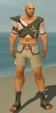 Monk Shing Jea Armor M gray chest feet front.jpg