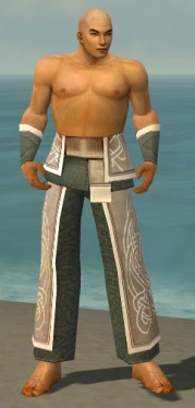 Monk Tyrian Armor M gray arms legs front.jpg