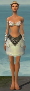Paragon Istani Armor F gray arms legs front.jpg