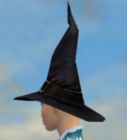 Wicked Hat F gray side.jpg