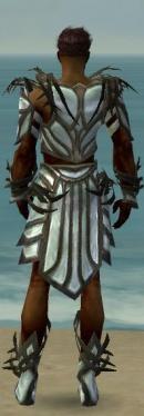 Paragon Primeval Armor M gray back.jpg