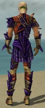 Ranger Elite Drakescale Armor M dyed back.jpg