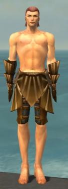 Ranger Sunspear Armor M gray arms legs front.jpg
