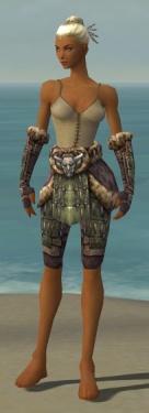 Warrior Charr Hide Armor F gray arms legs front.jpg