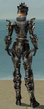 Warrior Obsidian Armor F dyed back.jpg
