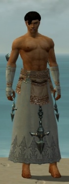 Dervish Vabbian Armor M gray arms legs front.jpg