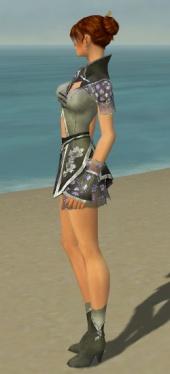 Elementalist Shing Jea Armor F gray side.jpg