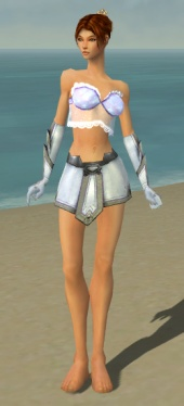Elementalist Ascalon Armor F gray arms legs front.jpg