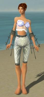 Elementalist Primeval Armor F gray arms legs front.jpg