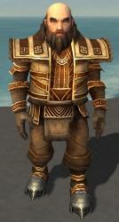 Ogden Stonehealer Armor Brotherhood Front.jpg
