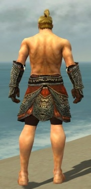 Warrior Elite Canthan Armor M gray arms legs back.jpg