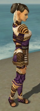 Monk Elite Canthan Armor F dyed side.jpg