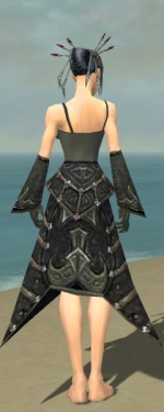 Necromancer Elite Cultist Armor F gray arms legs back.jpg