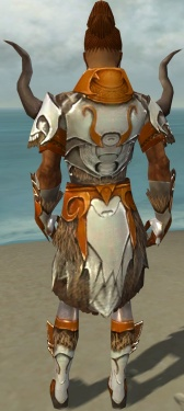 Paragon Norn Armor M dyed back.jpg