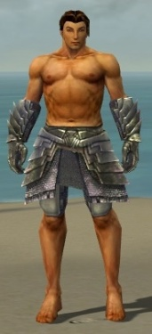 Warrior Templar Armor M gray arms legs front.jpg