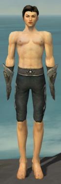 Elementalist Flameforged Armor M gray arms legs front.jpg