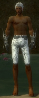 Elementalist Primeval Armor M gray arms legs front.jpg