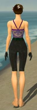 Mesmer Tyrian Armor F gray arms legs back.jpg