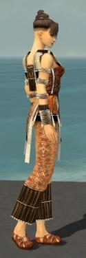 Monk Elite Sunspear Armor F dyed side.jpg