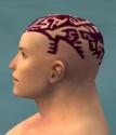 Monk Elite Sunspear Armor M dyed head side.jpg