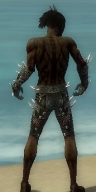 Necromancer Elite Canthan Armor M gray arms legs back.jpg