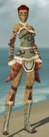 Ranger Canthan Armor F gray front.jpg
