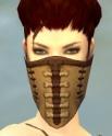 Ranger Krytan Armor F dyed head front.jpg