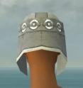 Warrior Ascalon Armor F gray head back.jpg