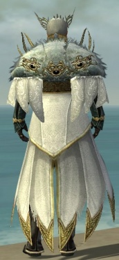 Dwayna's Regalia M default back.jpg