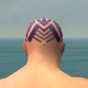 Monk Labyrinthine Armor M dyed head back.jpg