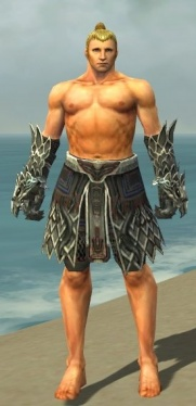 Warrior Silver Eagle Armor M gray arms legs front.jpg