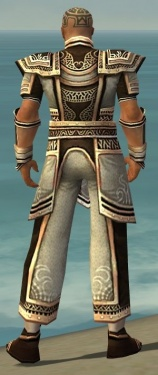 Monk Monument Armor M gray back.jpg