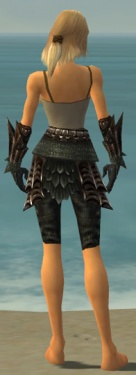 Warrior Elite Dragon Armor F gray arms legs back.jpg
