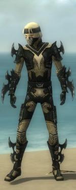 Assassin Kurzick Armor M dyed front.jpg