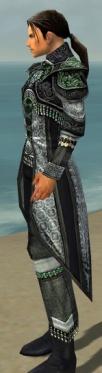 Elementalist Elite Luxon Armor M dyed side.jpg