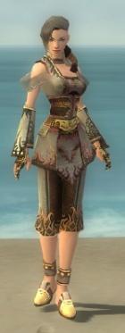 Monk Deldrimor Armor F gray front.jpg