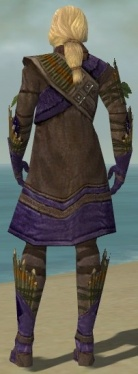 Ranger Elite Druid Armor M dyed back.jpg