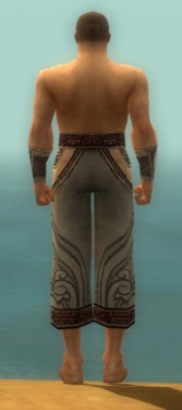 Monk Asuran Armor M gray arms legs back.jpg