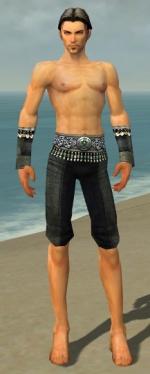 Elementalist Elite Luxon Armor M gray arms legs front.jpg
