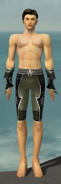Elementalist Shing Jea Armor M gray arms legs front.jpg