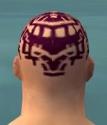 Monk Elite Sunspear Armor M dyed head back.jpg