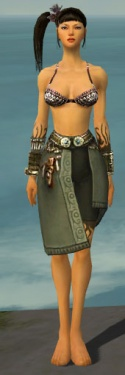 Ritualist Canthan Armor F gray arms legs front.jpg