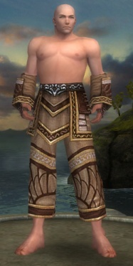 Monk Elite Canthan Armor M gray arms legs front.jpg