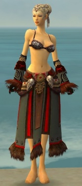 Ritualist Norn Armor F gray arms legs front.jpg