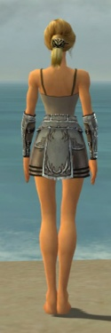 Warrior Istani Armor F gray arms legs back.jpg