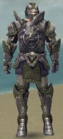 Warrior Platemail Armor M gray front.jpg
