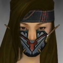 Assassin Elite Kurzick Armor F gray head front.jpg