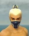 Assassin Norn Armor M dyed head front.jpg