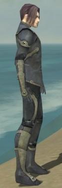 Elementalist Ascalon Armor M gray side.jpg
