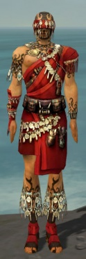 Ritualist Canthan Armor M dyed front.jpg